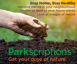 Parkscriptions Ad Advnw 2020 Stayhome