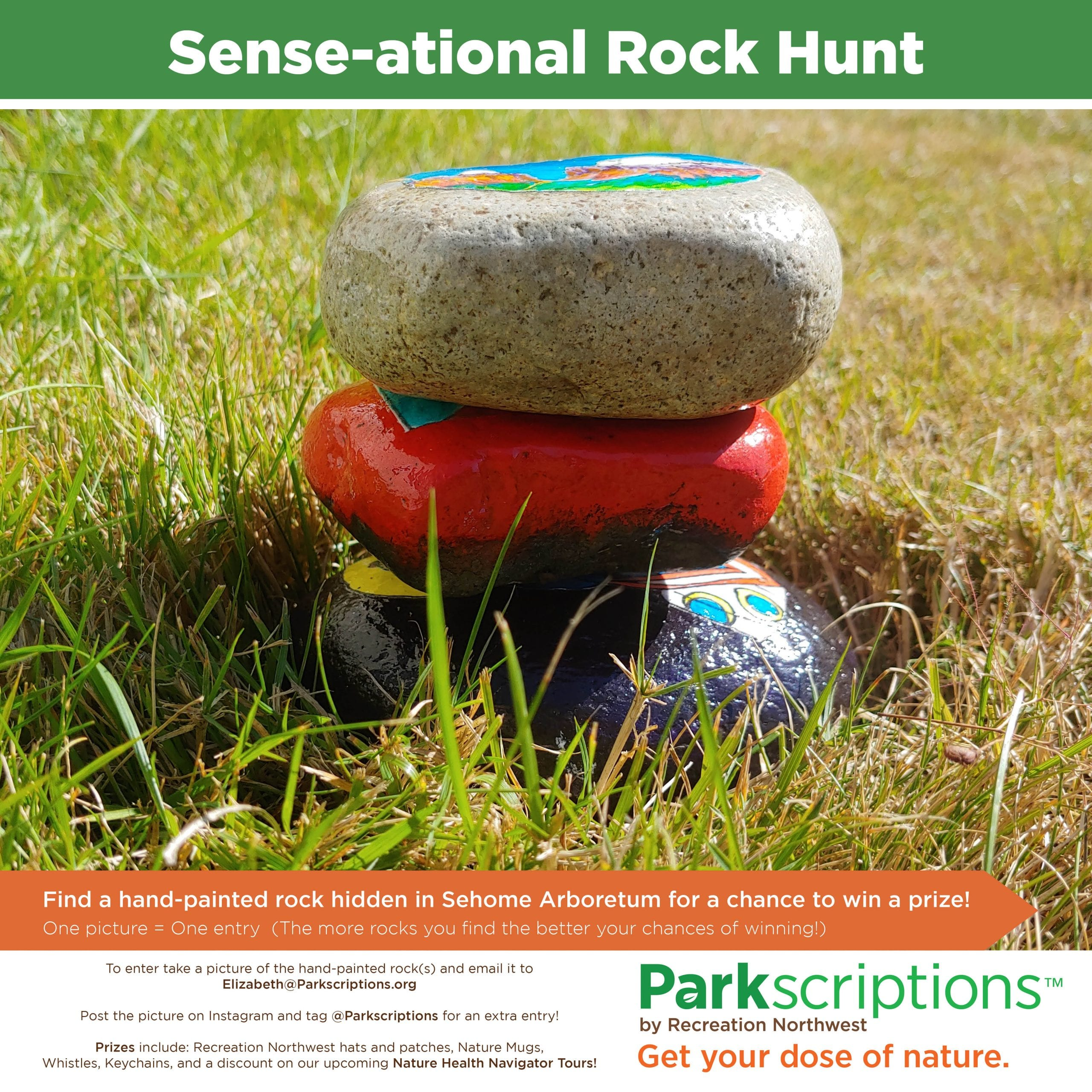 Sense Ational Rock Hunt Graphic